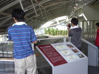 cycling_2003awaji_hokudan3_320_c
